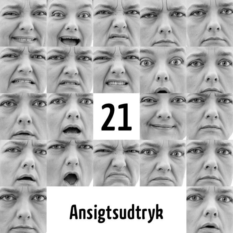 De 21 ansigtsudtryk